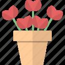flowers, garden, pot, tulips