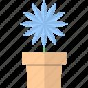 decor, flowers, garden, pot icon