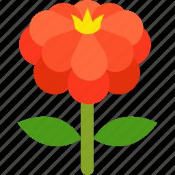 flora, floral, florist, flower, garden, pretty, zinnia icon