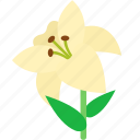 floral, florist, flower, garden, lily, white icon
