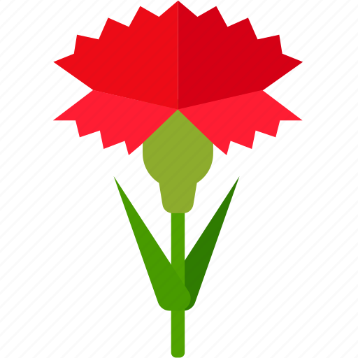 carnation, floral, florist, flower, garden icon