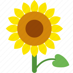 floral, flower, garden, seed, sun, sunflower icon