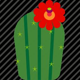 cactus, desert, flower, garden, house, plant icon