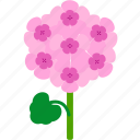 floral, florist, flower, garden, geranium, nature