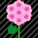 floral, florist, flower, garden, geranium, nature icon