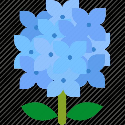floral, florist, flower, garden, hydrangea, nature icon