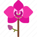 floral, florist, flower, garden, nature, orchid icon