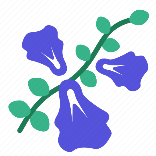 anchan, butterfly pea, flower, garden, perennial, plant, vine icon