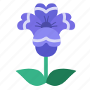 blooming, blossom, floral, flower, garden, bloom, flowers icon