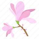 blossom, botany, floral, flower, magnolia, plant, tree icon