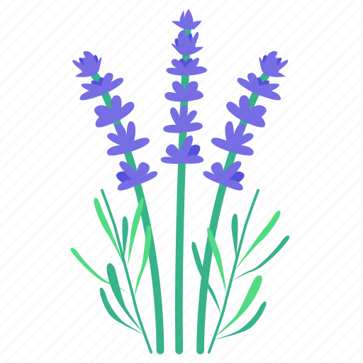 aroma, blooming, flowers, herb, lavenders, purple, scent icon