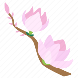 blooming, blossom, flower, flowers, garden, magnolia, plant icon