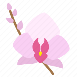 bloom, blossom, floral, flower, flowering plant, flowers, orchid icon