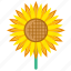 bloom, blossom, floral, flower, garden, summer, sunflower icon