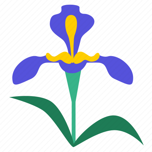 botany, flora, floral, flower, flowering, iris, plant icon