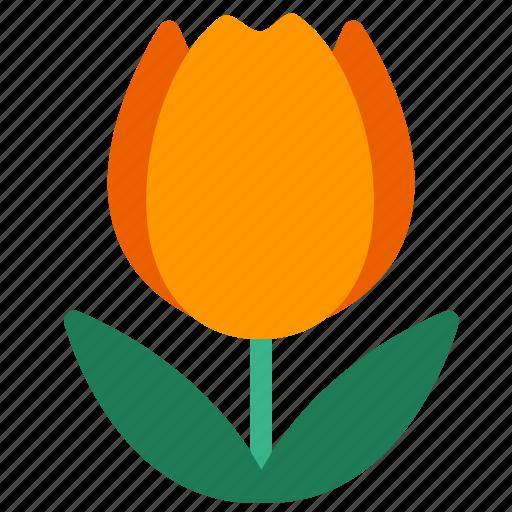 bloom, bulbous plant, flower, garden, herb, plant, tulip icon
