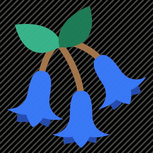 blossom, bluebells, flora, flower, garden, plant, wildflower icon