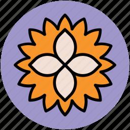 chinese flower, decorative, flower, pretty flower icon