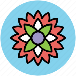 beauty, chinese flower, decorative flower, flower, nature icon