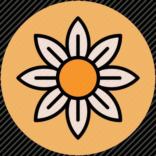 columbine, columbine flower, flower, spring wild flower, wild flower icon