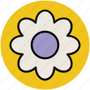 blossom, daisy, daisy flower, flower, nature, spring icon