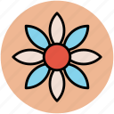 bloodroot flower, flower, puccoon, red root, spring bloodroot icon