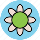dandelion, flower, goldenrod, nature, sunflower icon