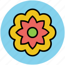 chinese flower, decorative, flower, nature, pretty flower icon