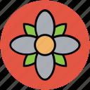 flower, great chickweed, spring wild flower, wild flower icon