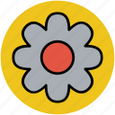 anemone flower, bloom, flower, natural, petal, seasonal, spring icon