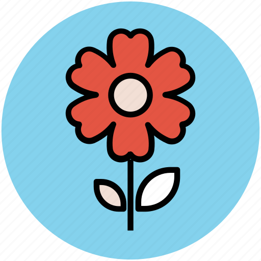 anemone, anemone flower, flower, flower with stem, spring flower icon
