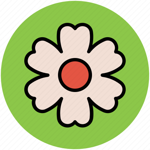 flower, heart shape petals, shamrock shape flower, trifoliolate icon