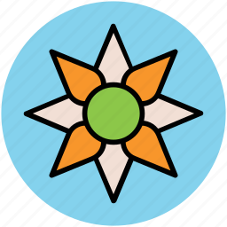 flower, hoya bella, hoya flower, hoya wax flower, wax flower icon