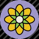 created flower, creative, flower, round flower, round leafs icon