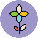 flower, great chickweed, spring wild flower, stem flower, wild flower icon