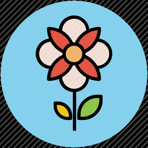 flower, great chickweed, spring wild flower, stem flower, wild flower icon