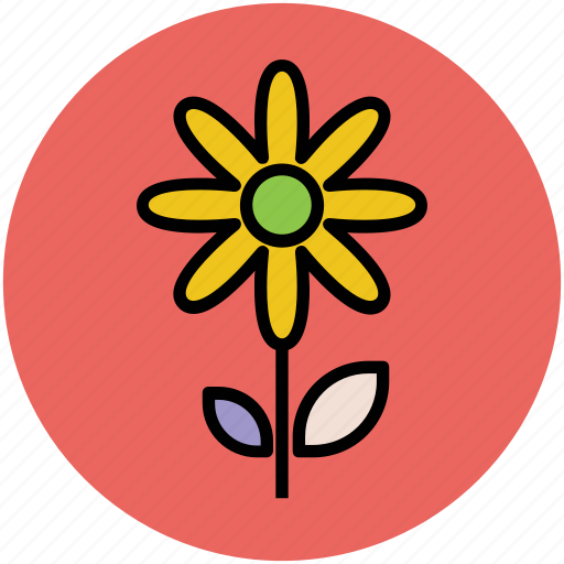 flower, flower on stem, gerbera, gerbera daisy, gerbera flower, zinnia icon