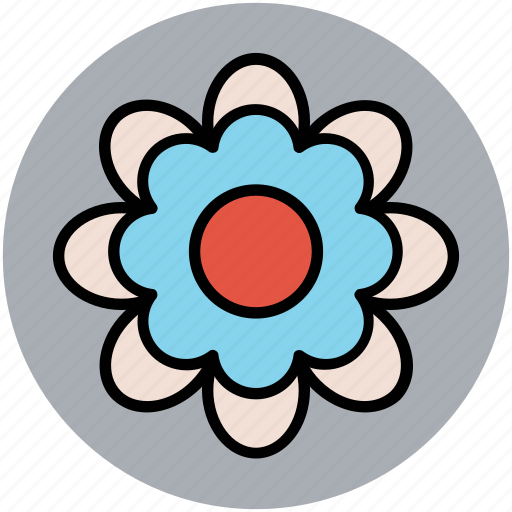 chinese flower, decorative, flower, pretty flower icon