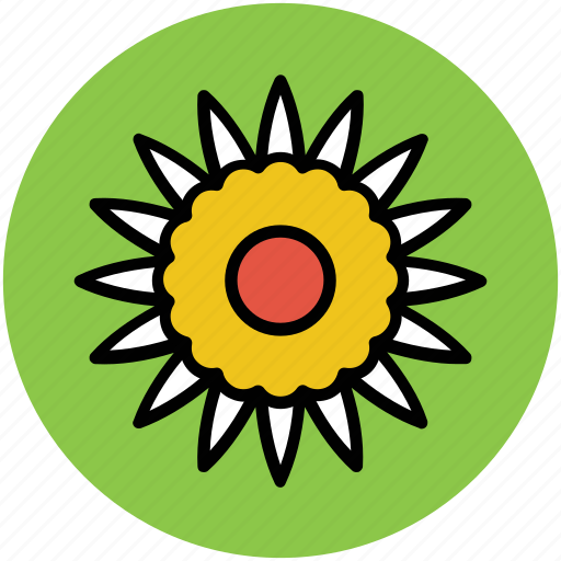 flower, gerbera, gerbera daisy, gerbera flower, nature icon