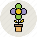 beauty, flowering plant, nature, plant, plant pot icon