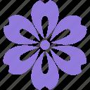 decoration, floral, flower, nature, ornament