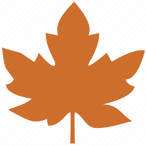 leaf, maple icon