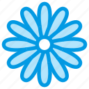 camomile, chamomile, daisy, flower, nature icon