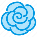 blossom, flower, garden, nature, rose icon