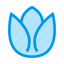 blossom, flower, garden, nature, spring, tulip icon