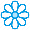 camomile, chamomile, flower, nature, spring icon