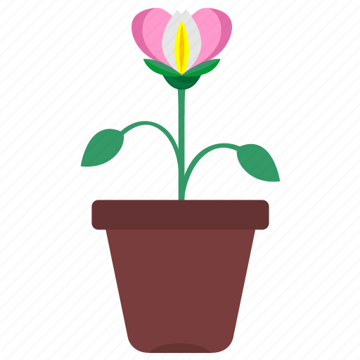 decoration, flower, flowers, garden, gardening, leaves, pot icon