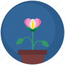 floral, flower, garden, nature, plant, pot icon