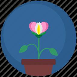 floral, flower, garden, nature, plant, pot icon