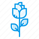 bloom, flower, flowering, flowers, gift, love, rose icon